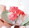 【母の日プレゼントフラワーバルーン】<br>Thank you Mother's Day レッドカーネーション(卓上タイプ)【送料込み】